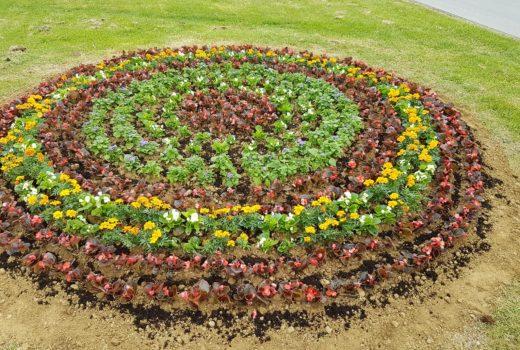 Motiv Ivanečkog veza od cvijeća