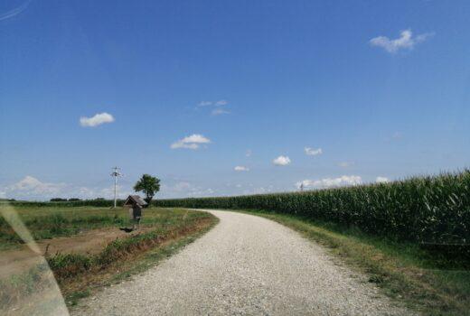 Obavljeno redovito malčiranje travnatih površina uz nerazvrstane ceste